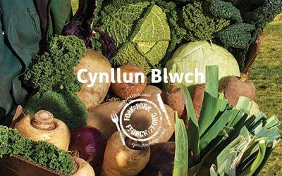 Cynllun Blychau (Fforch i Fforc)